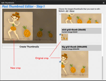 WP Post Thumbnail Editor Plugin